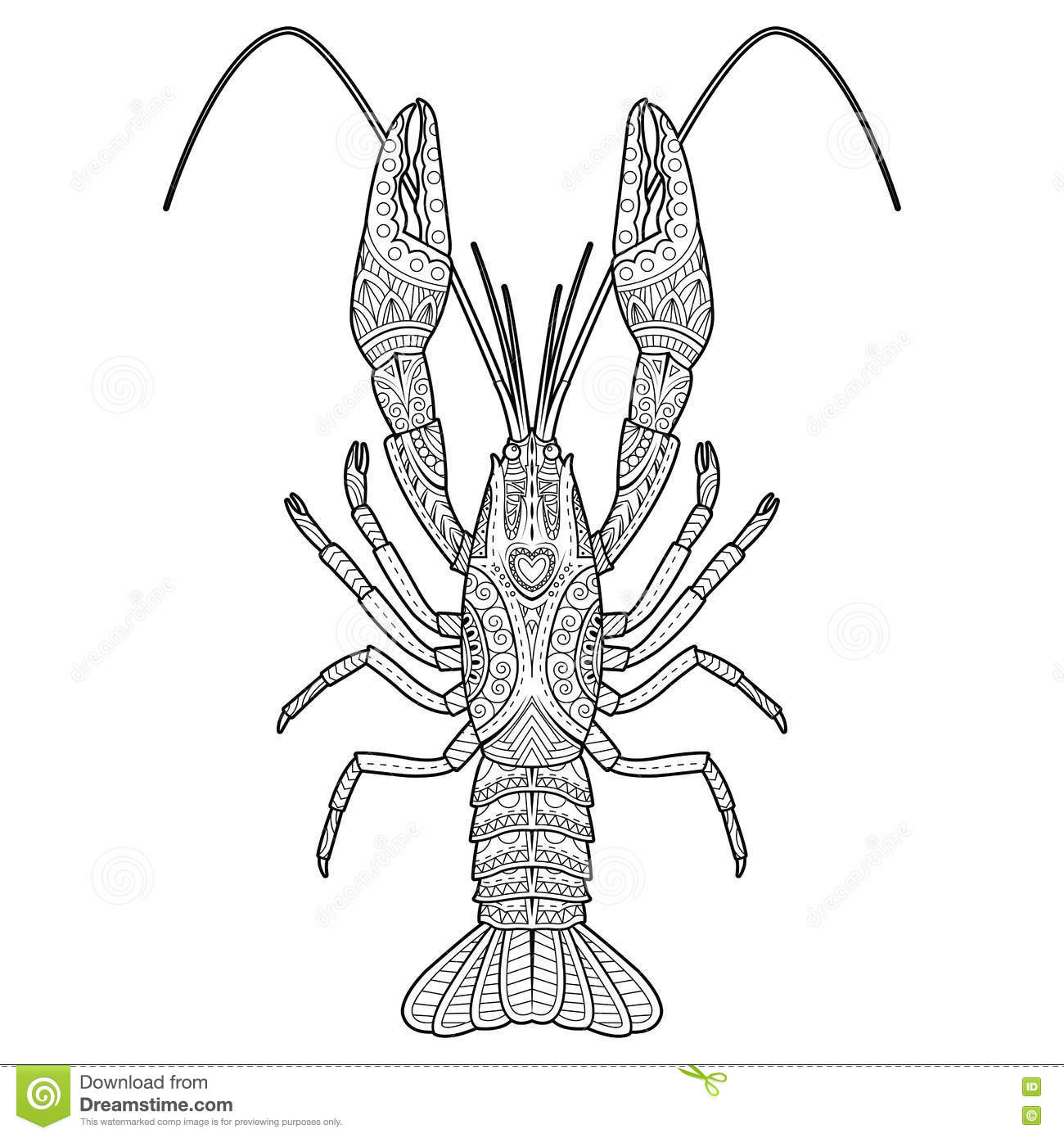 Crayfish Hand Drawing Vector Illustration Vector