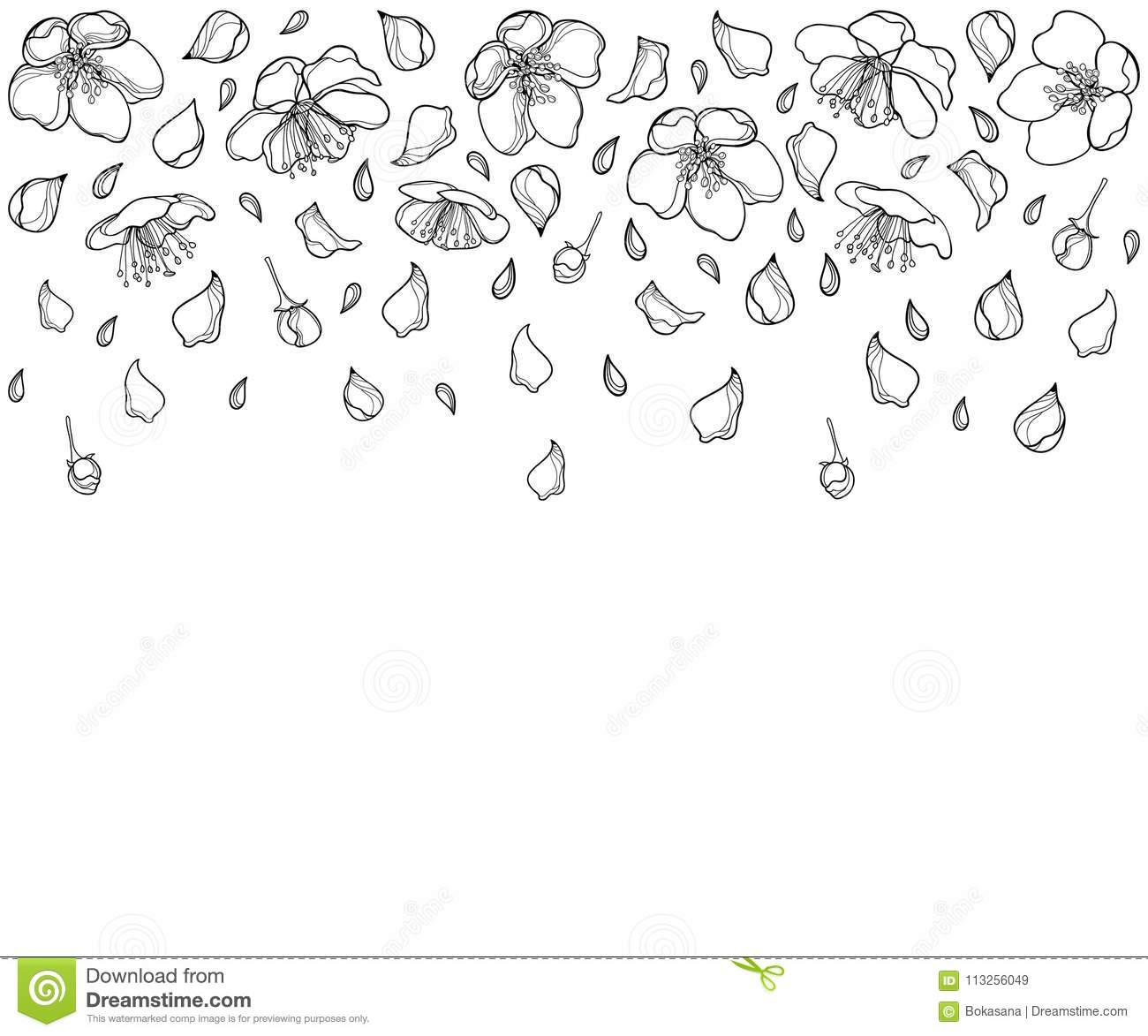 How To Draw Flower Petals Falling