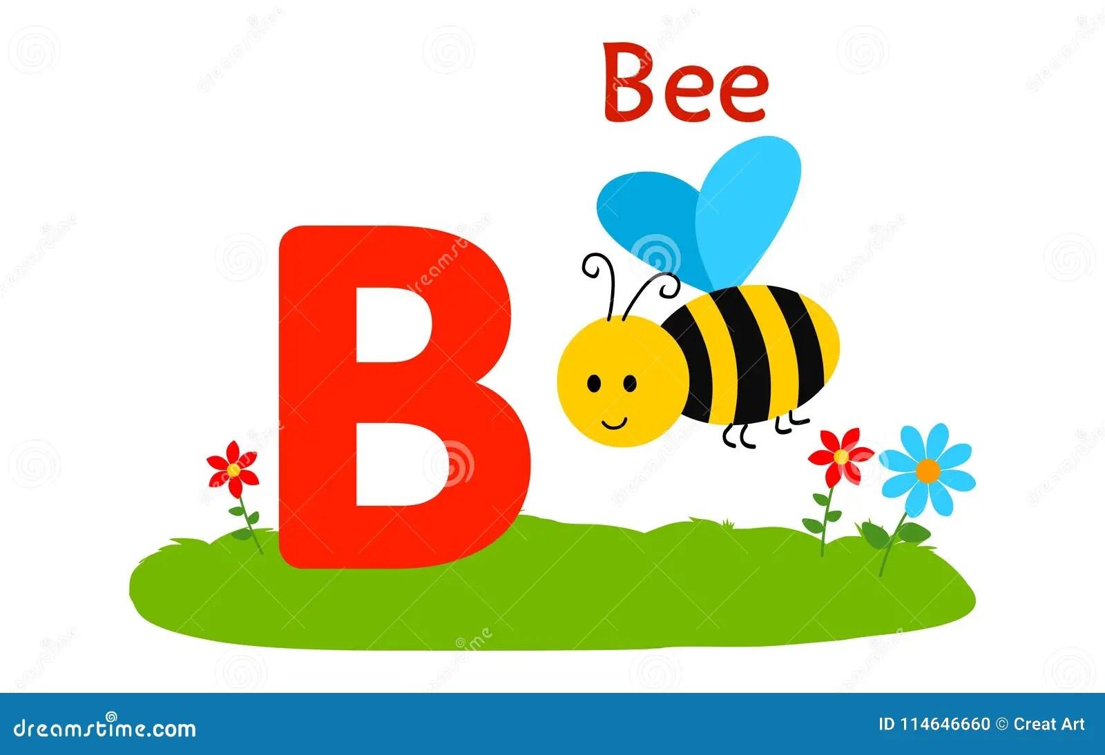 Animal Alphabet B B For Bee Stock Vector