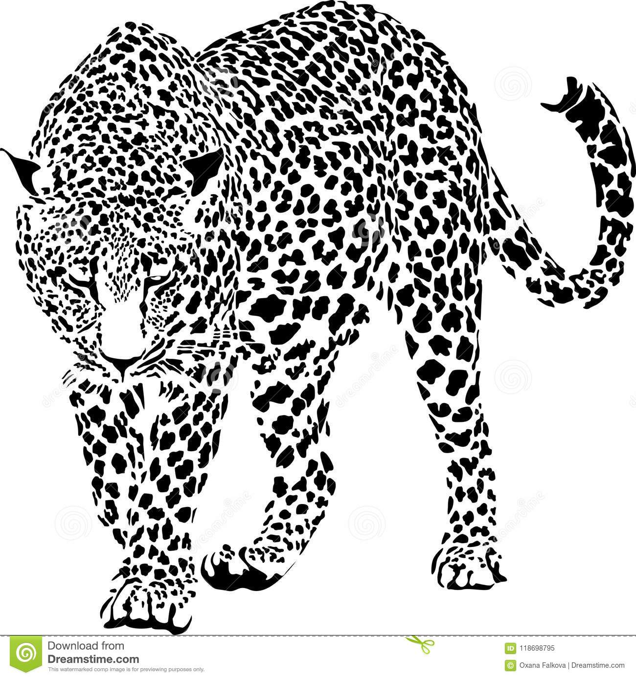 Leopard Cartoons Illustrations Amp Vector Stock Images