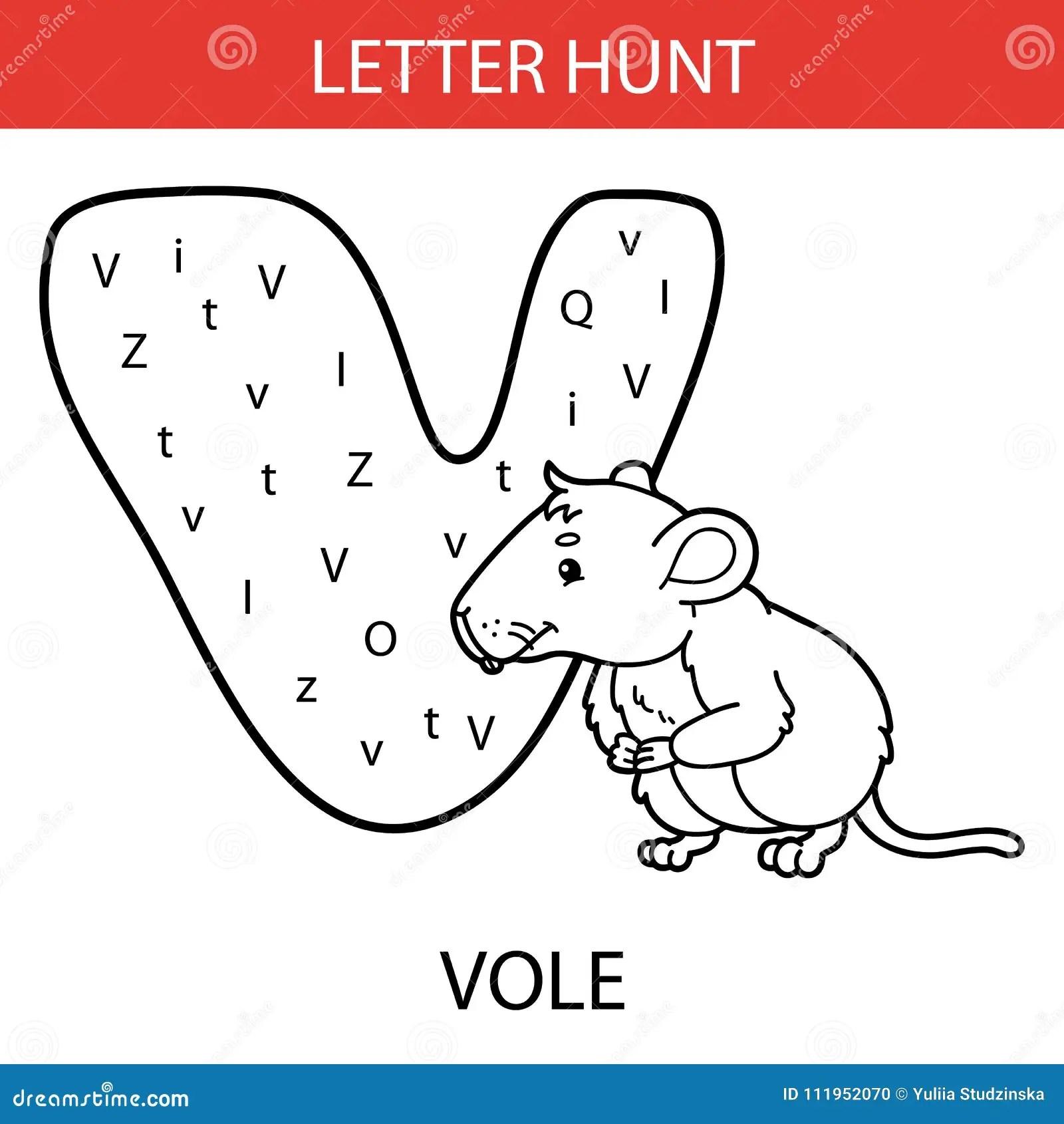 Animal Letter Hunt Vole Stock Vector Illustration Of