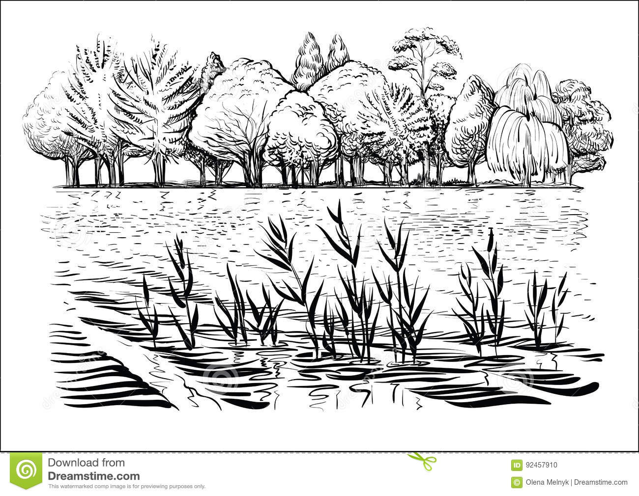 Vector Illustration Of River Landscape With Trees Water