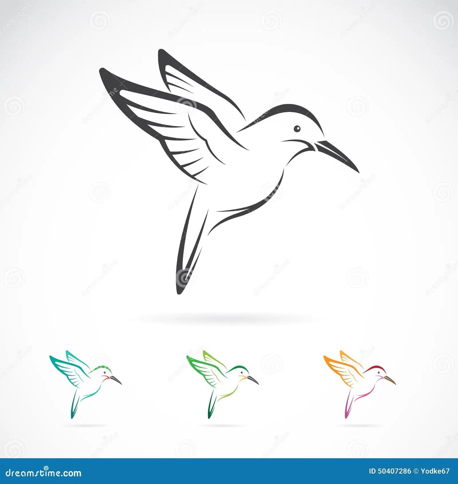 Vector Image Of An Hummingbird Design Stock Vector