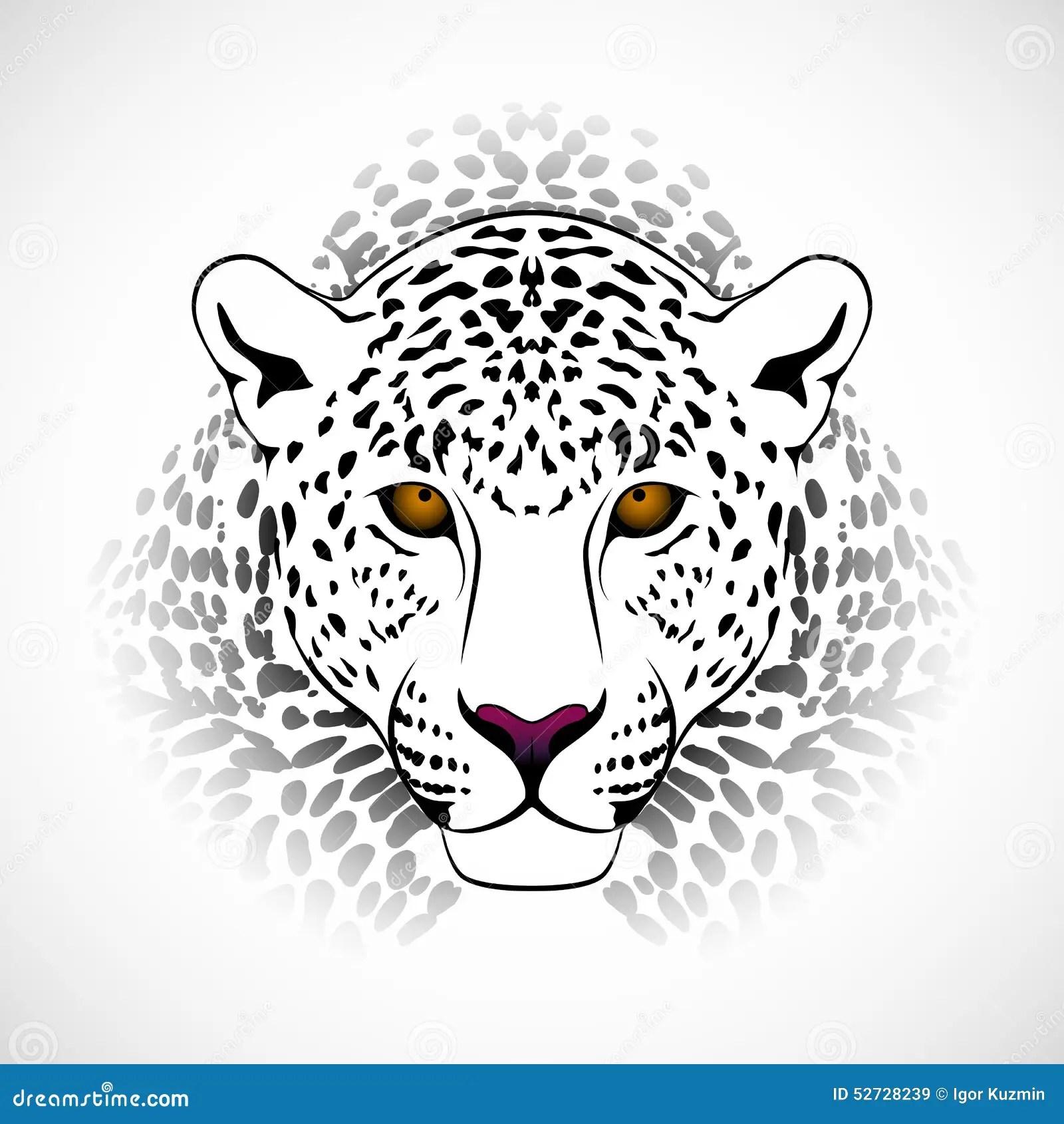 Vector Leopard Stock Vector Illustration Of Illustration