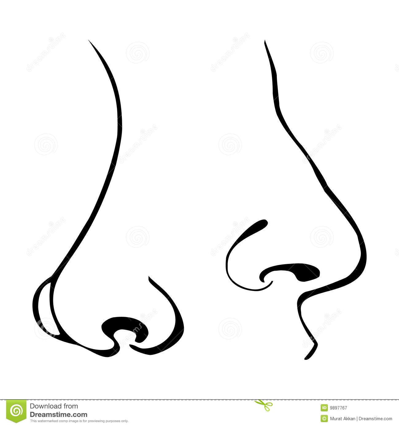Vector Nose Stock Vector Illustration Of Gorgeous