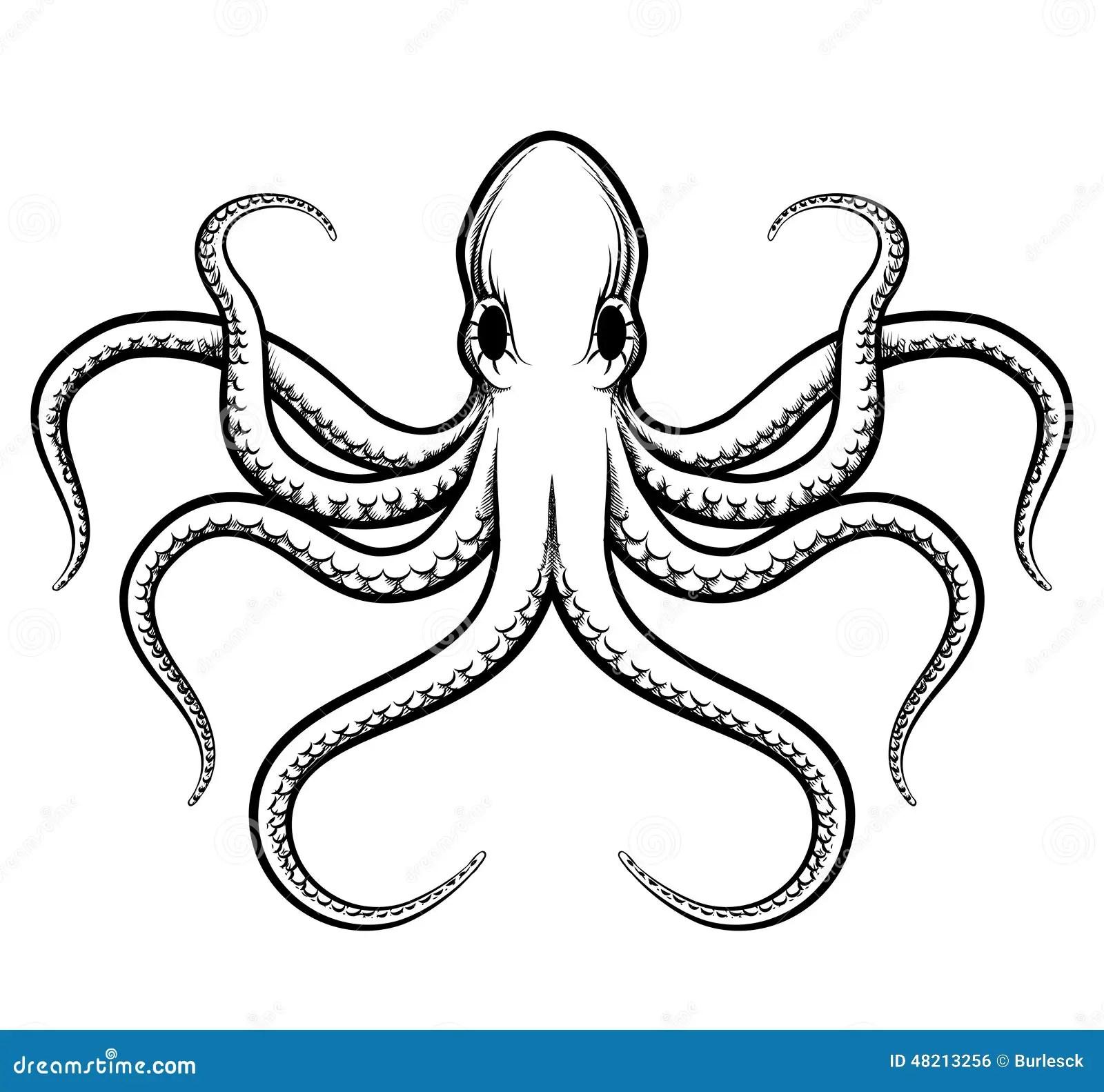 Vector Octopus Illustration Stock Vector