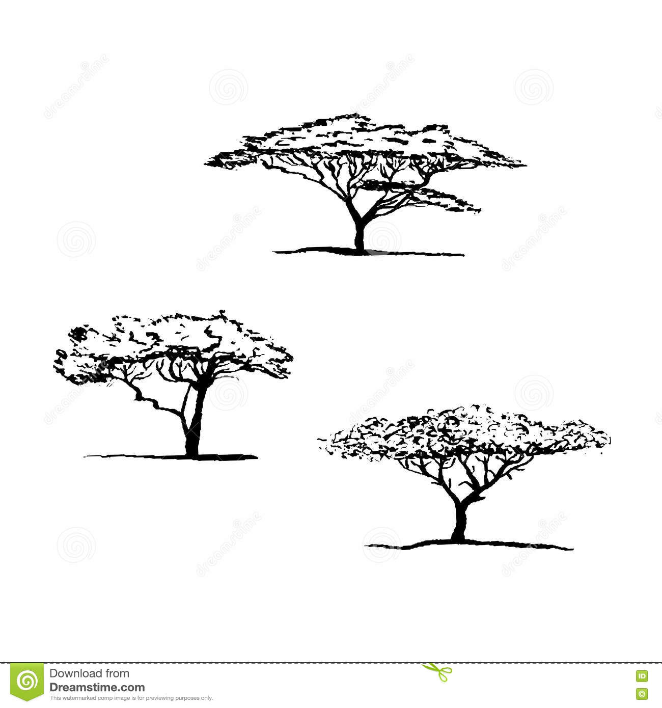 Vector Silhouette Of Acacia Tree African Tree Stock