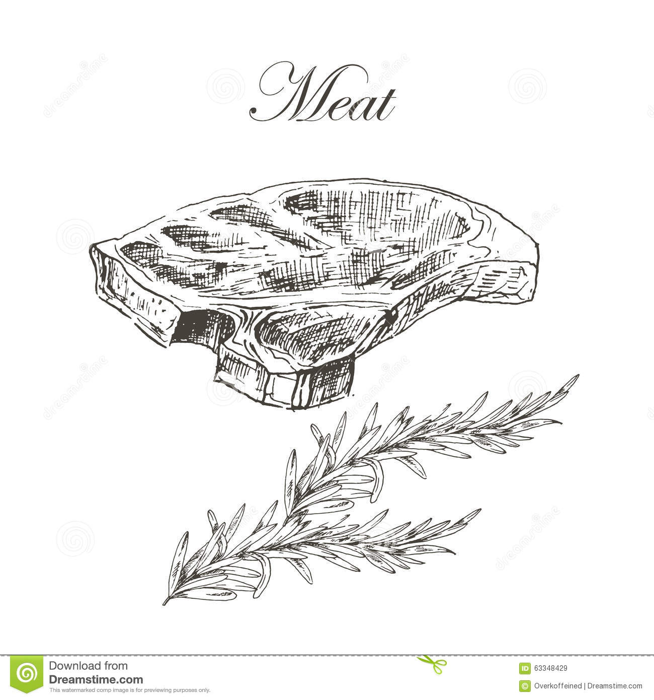 Vector Steak Meat Hand Drawing With Pepper And Stock