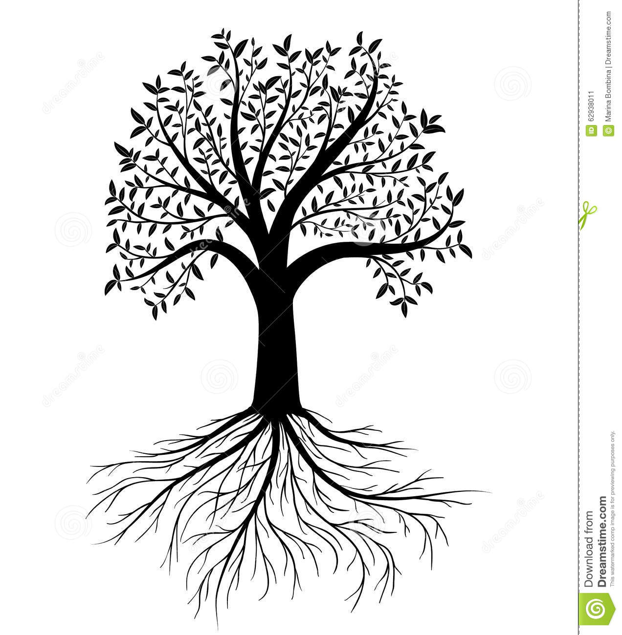 Vector Tree With Leaves And Roots Stock Vector