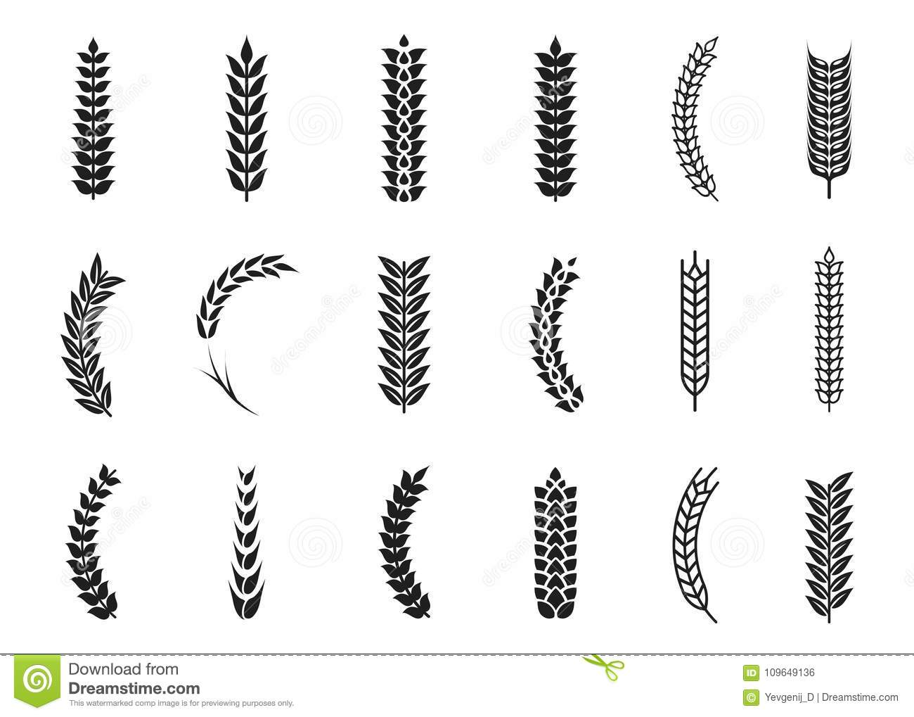 Vector Wheat Ears Icons Oat And Wheat Grains Stock Vector