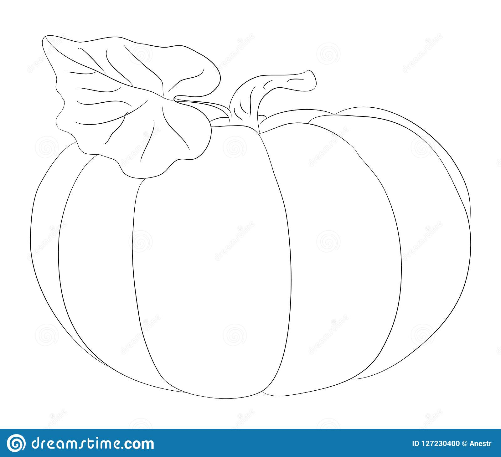 Vegetables And Fruits Drawing Lines Vector Stock Vector Illustration Of Avocado Graphics 127230400