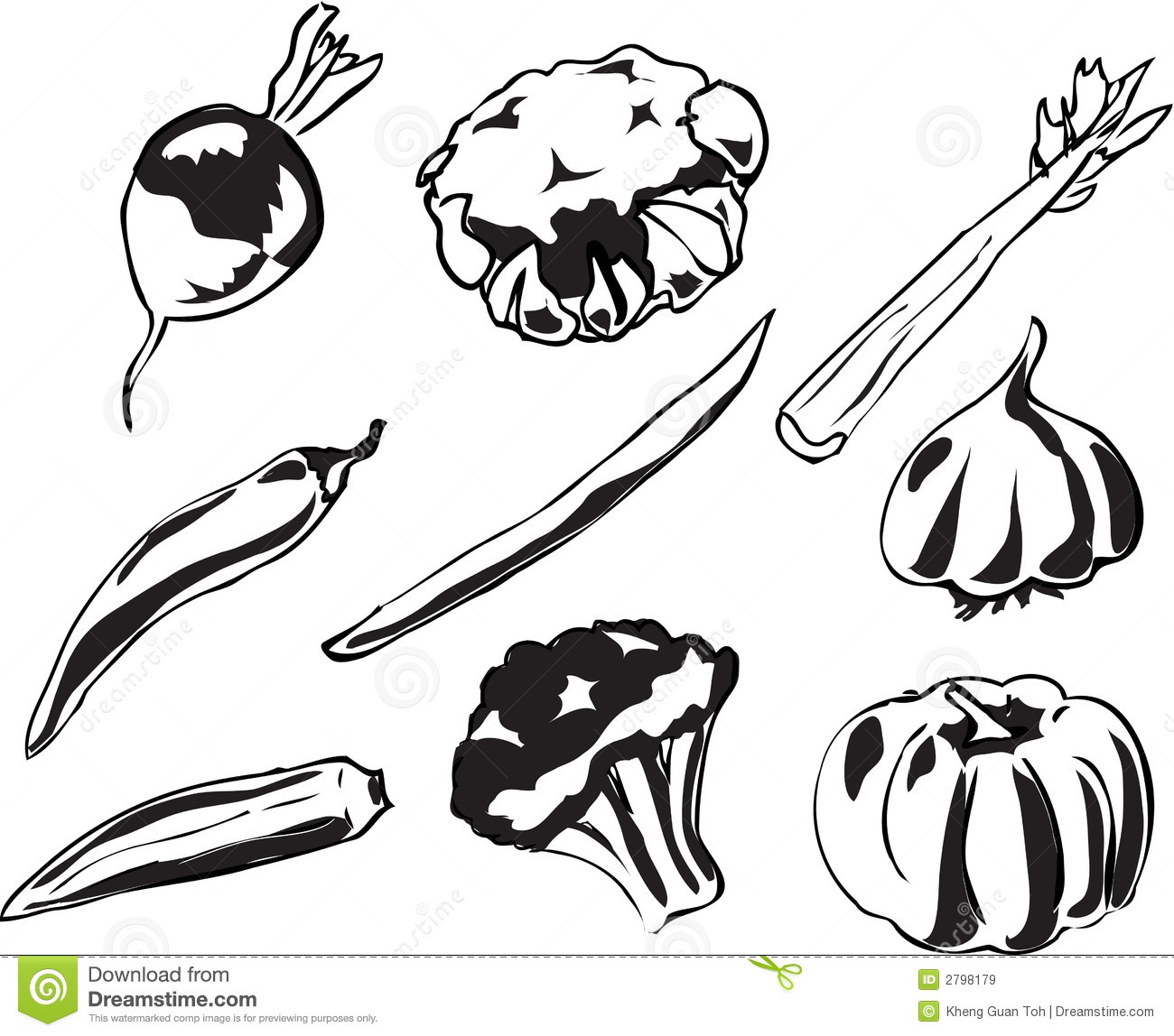 Vegetables Illustration Stock Vector Image Of Healthy