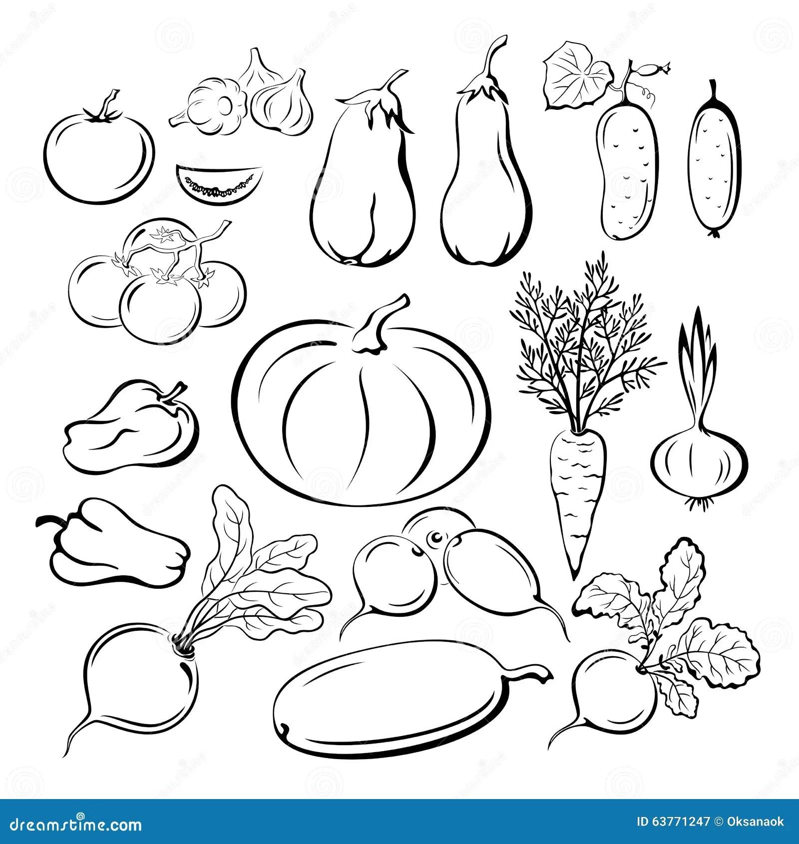 Vegetables Outline Pictograms Set Stock Vector