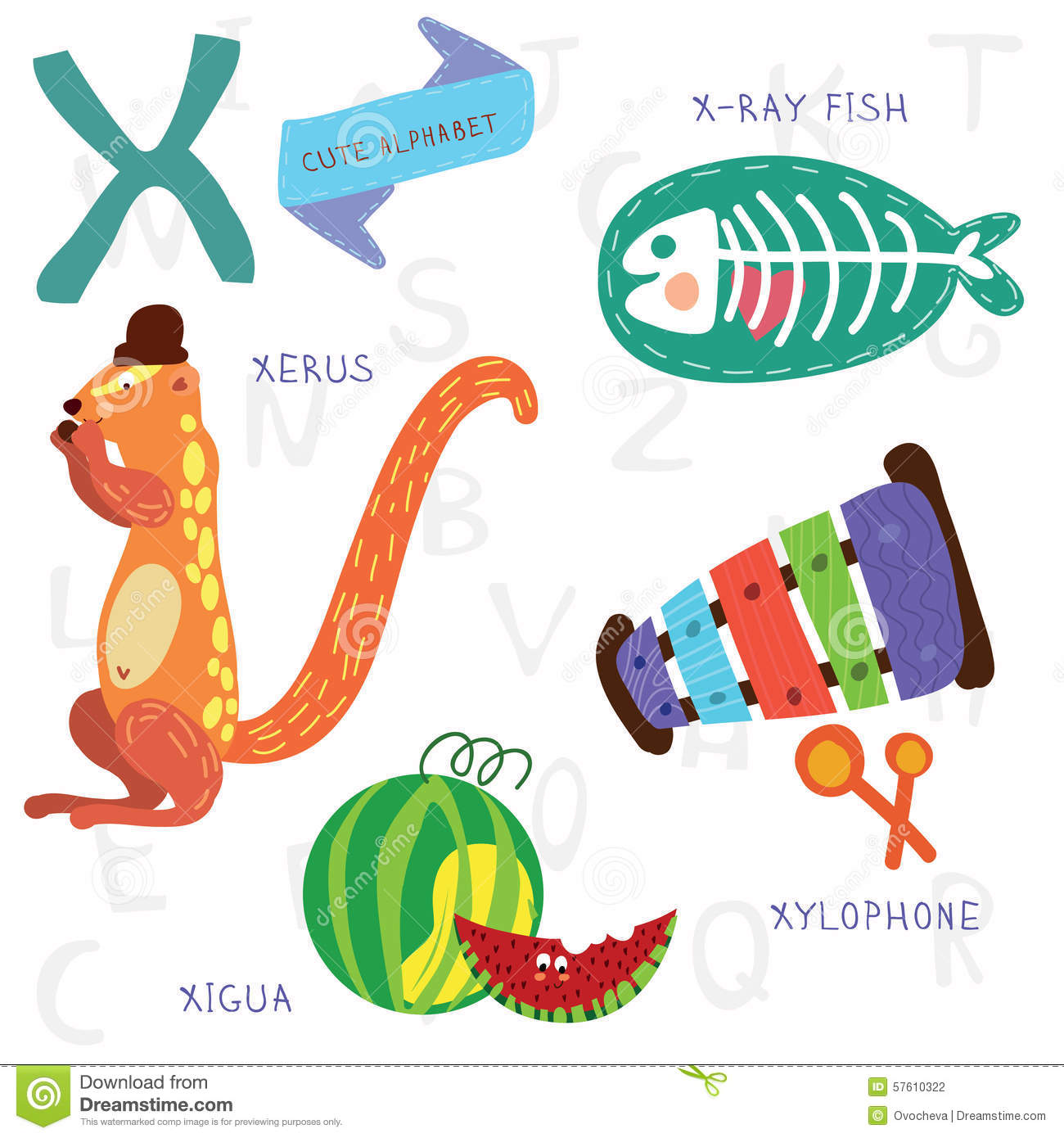 Very Cute Alphabet X Letter Xerus X Ray Fish Xylophone