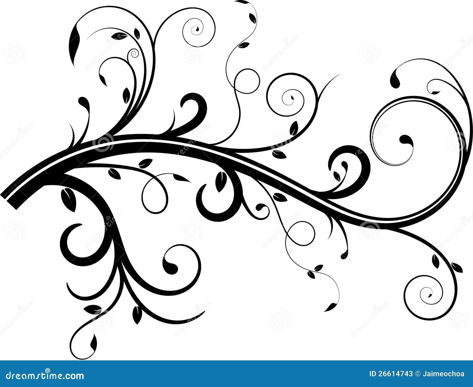 Vine Flourish Stock Vector Illustration Of Swirls Leaf