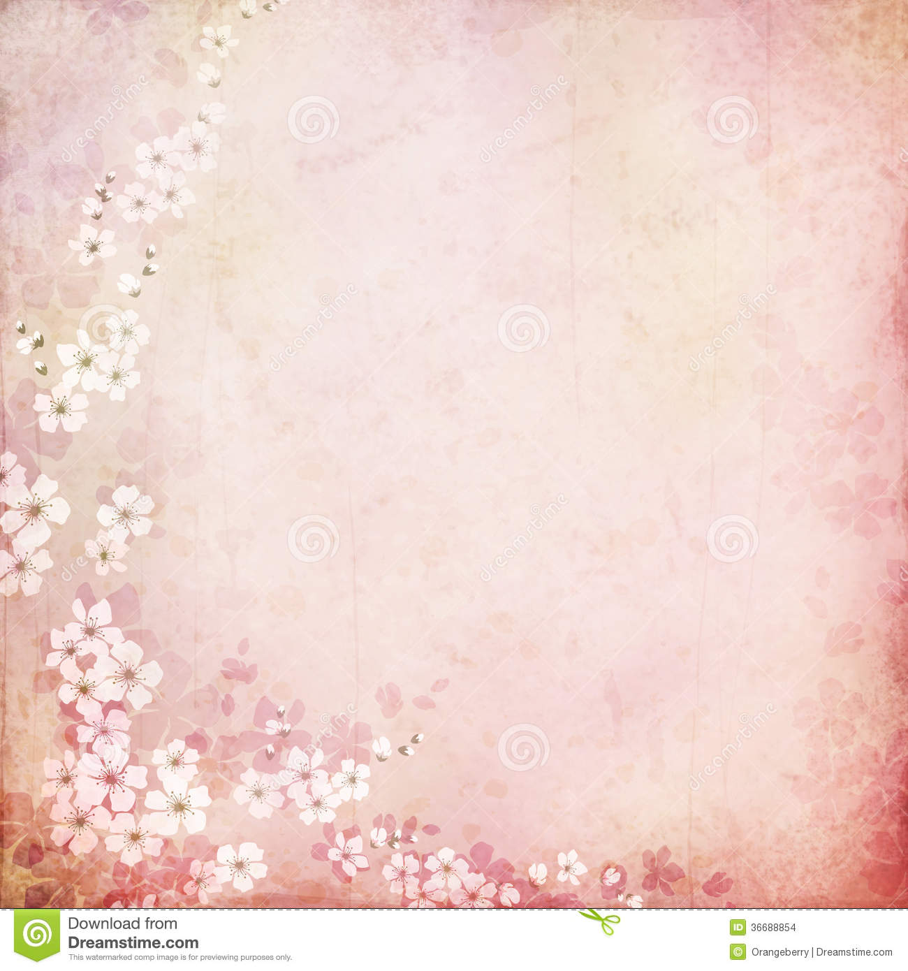 Vintage Background With Cherry Blossoms Stock Images