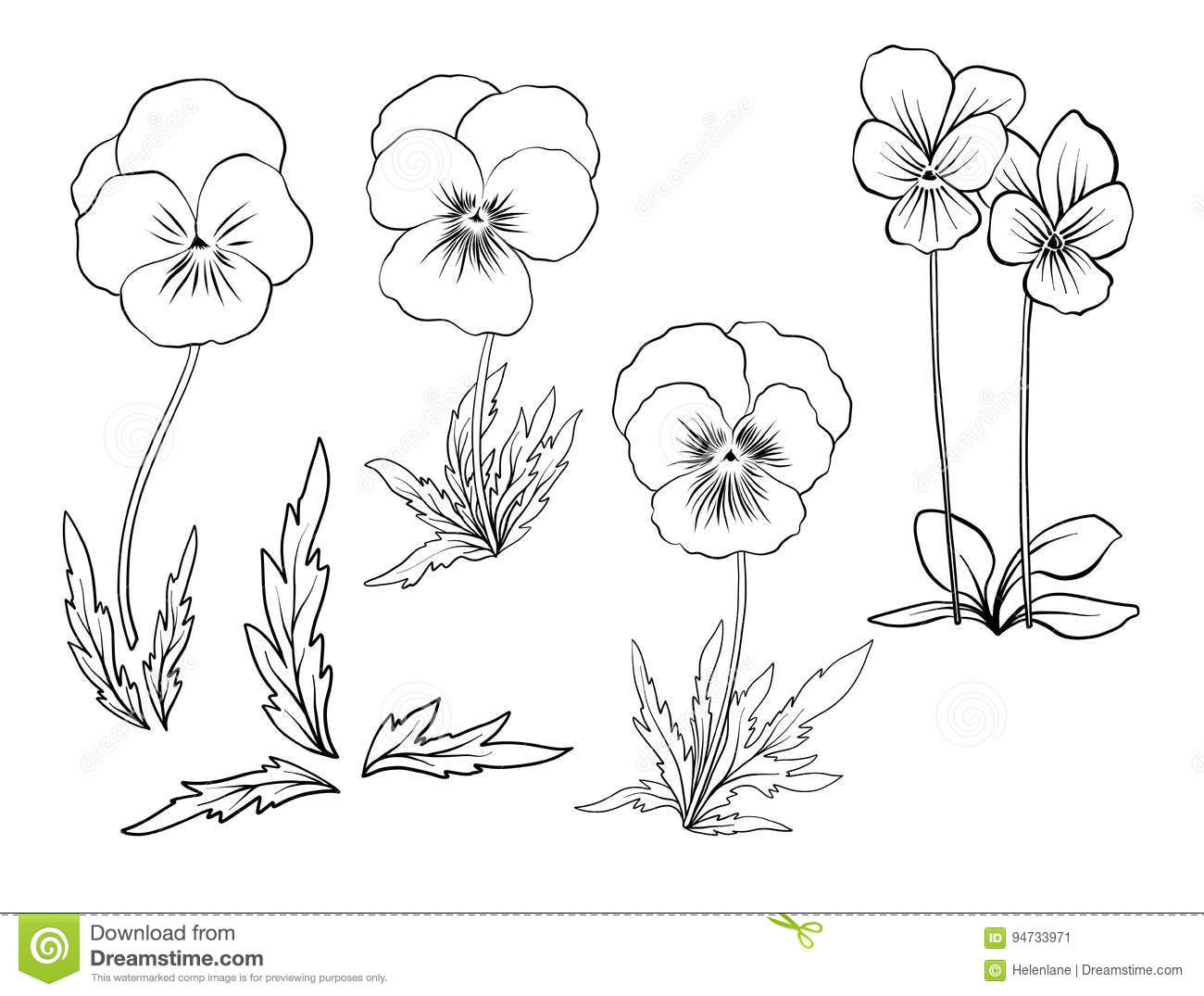 Violet Flowers Set Of Outline Flowers Stock Vector