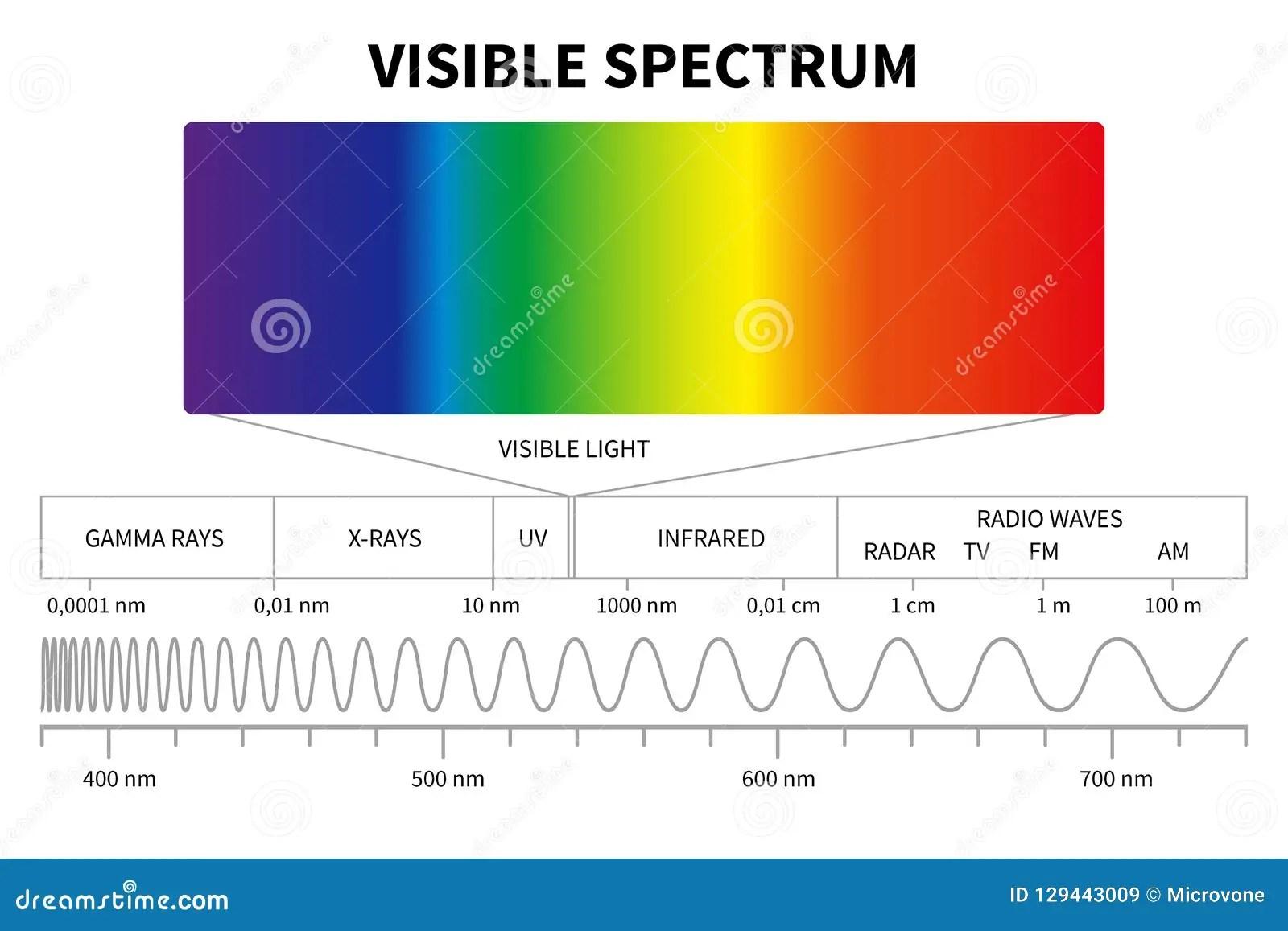Visible Light Diagram Color Electromagnetic Spectrum