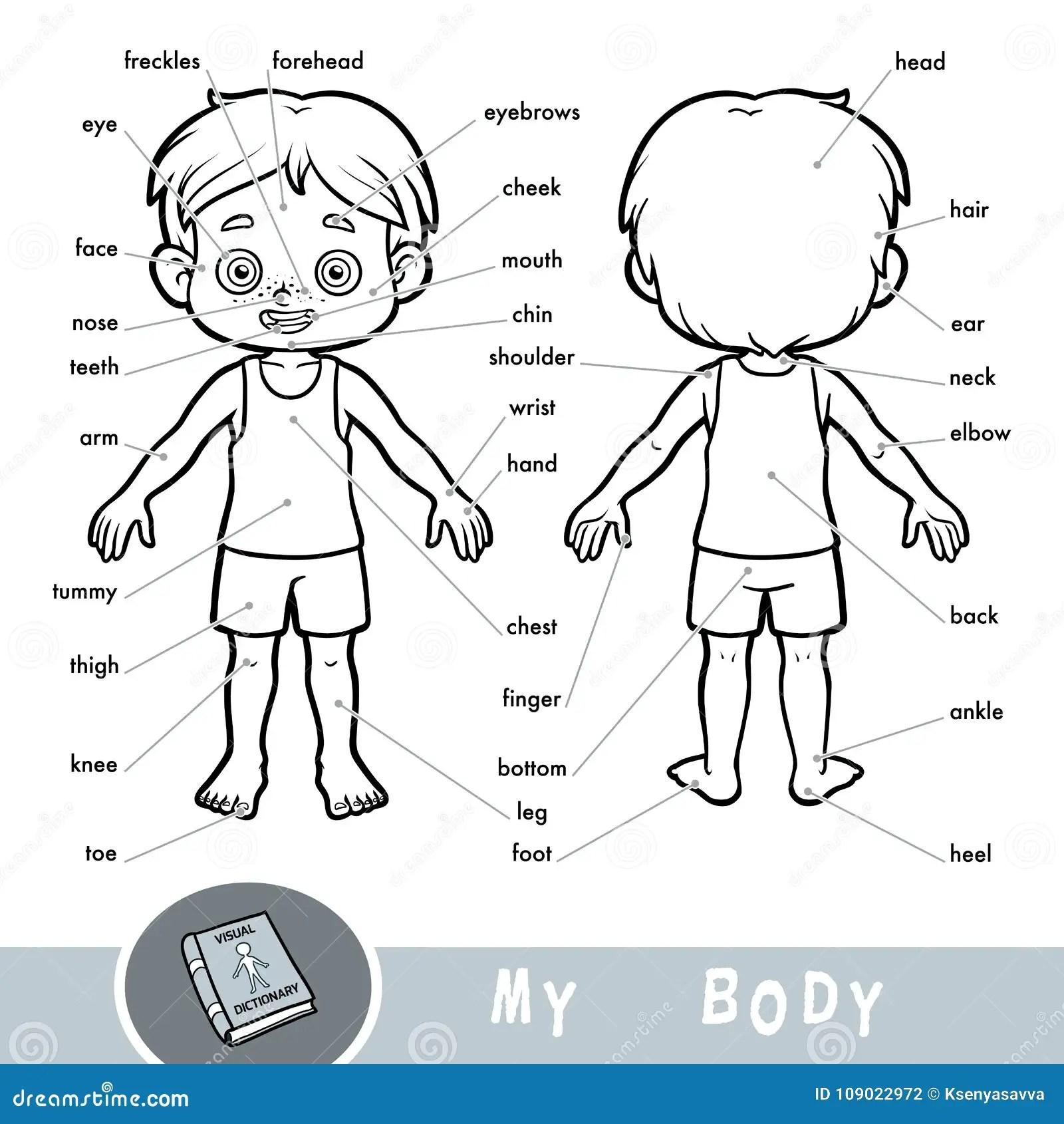 30 Label Of Human Body