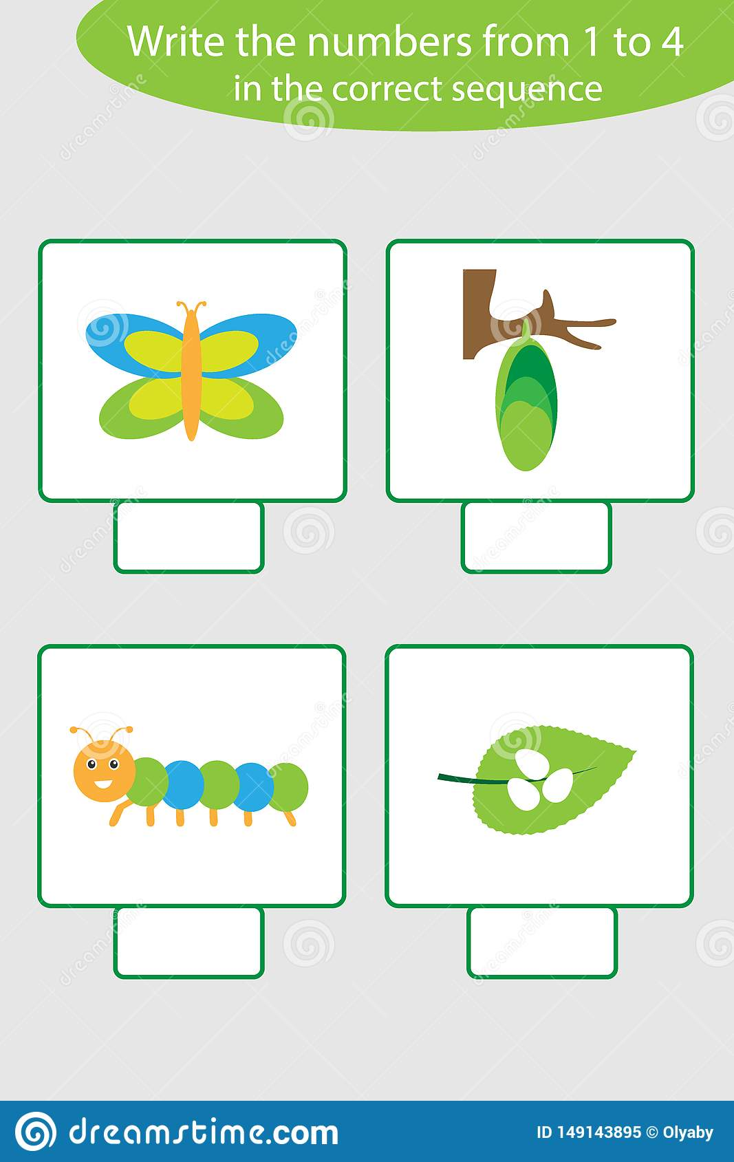 Visual Game With Life Cycle Of Butterfly Pictures For Kids