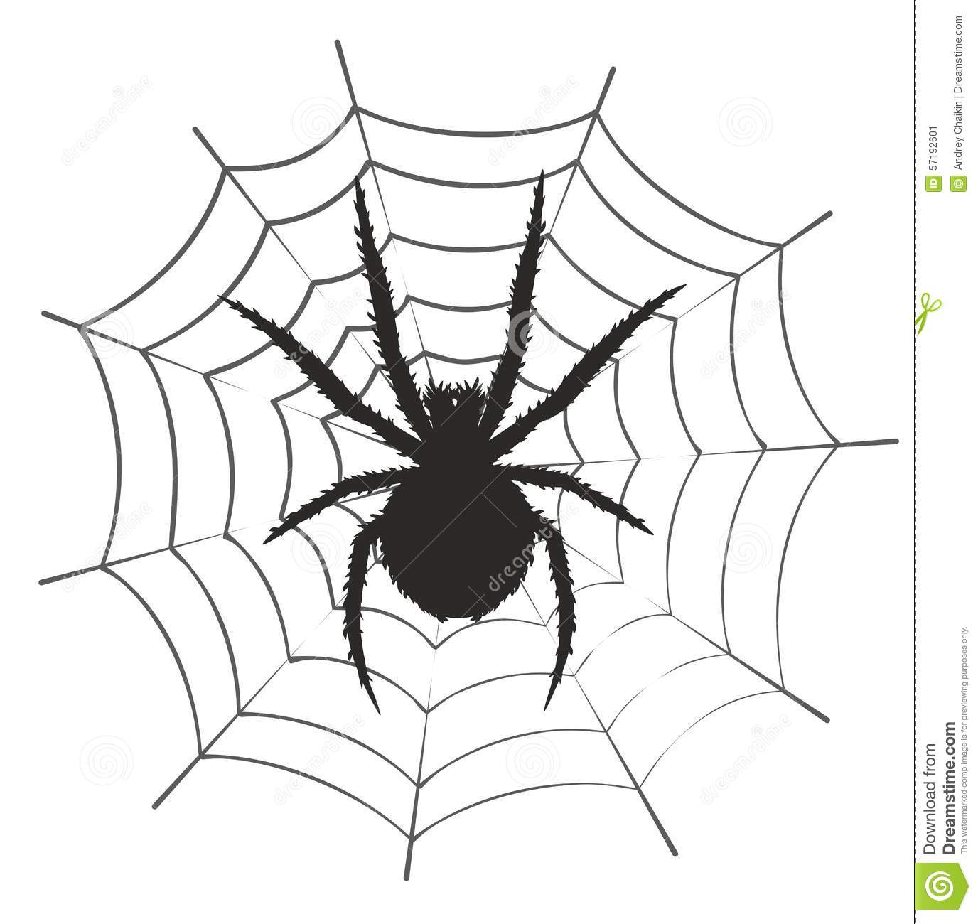 Web With A Spider Stock Vector