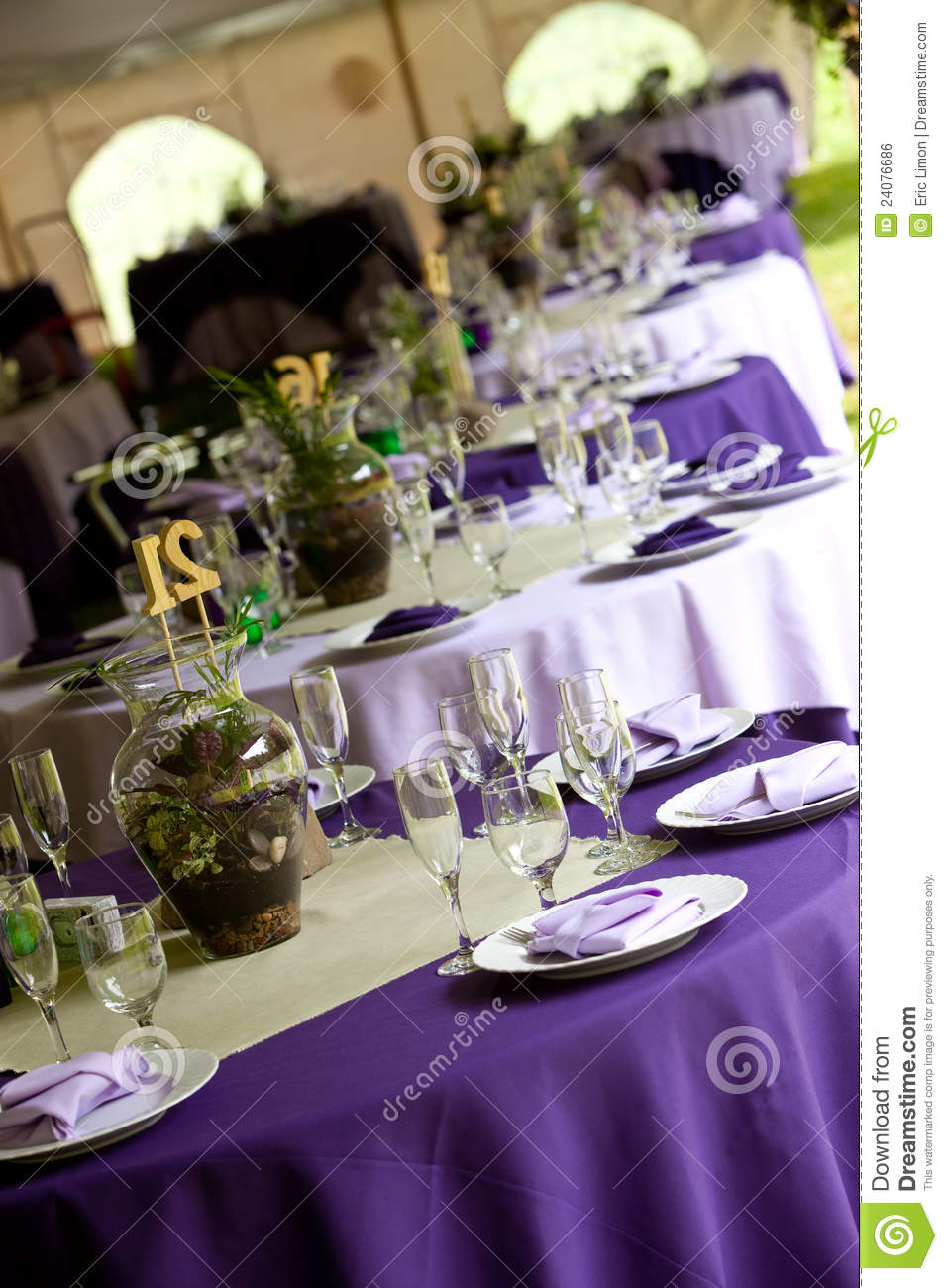 Wedding Tables In Purple And Green Stock Photo Image Of