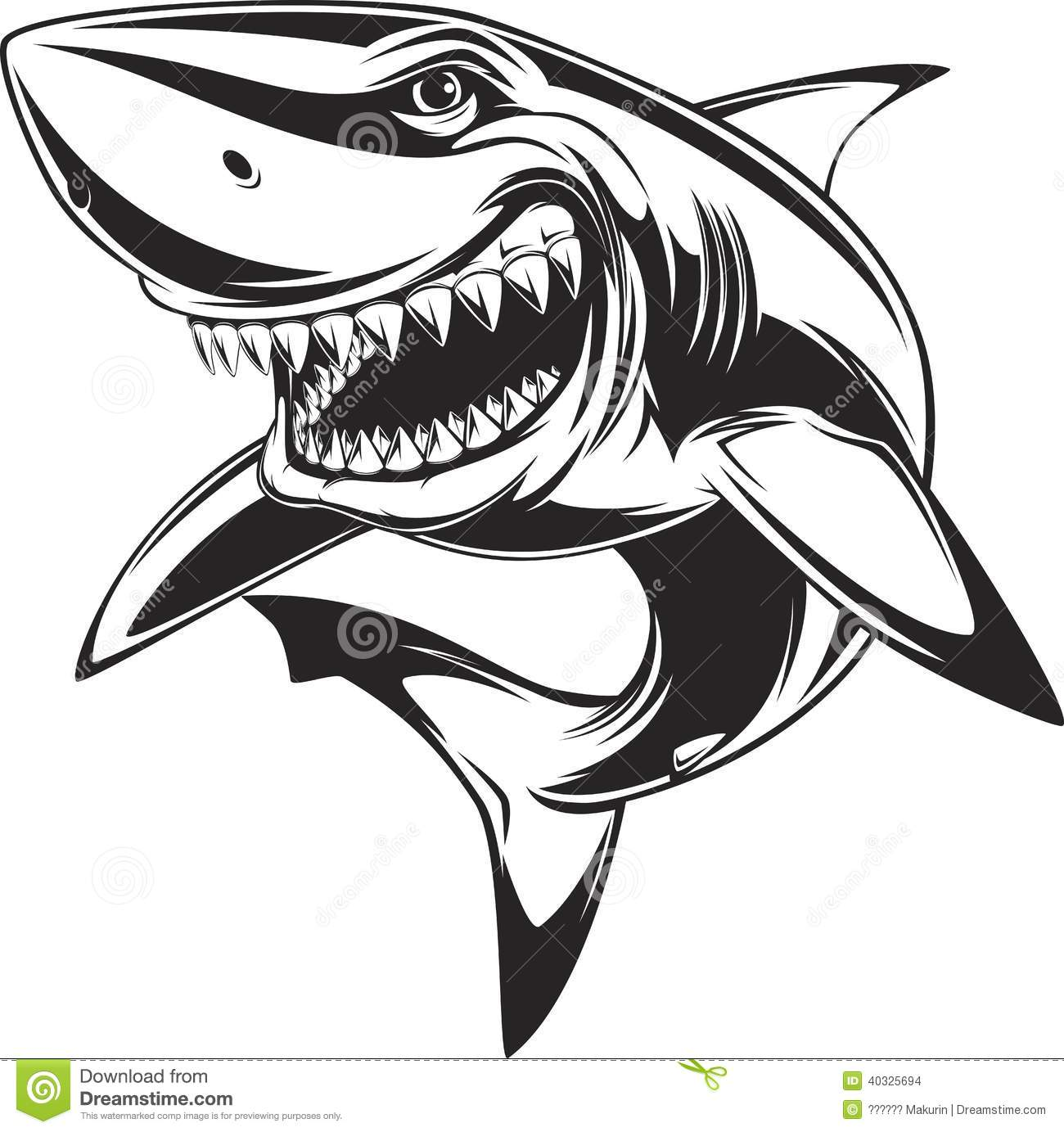 White Shark Stock Vector