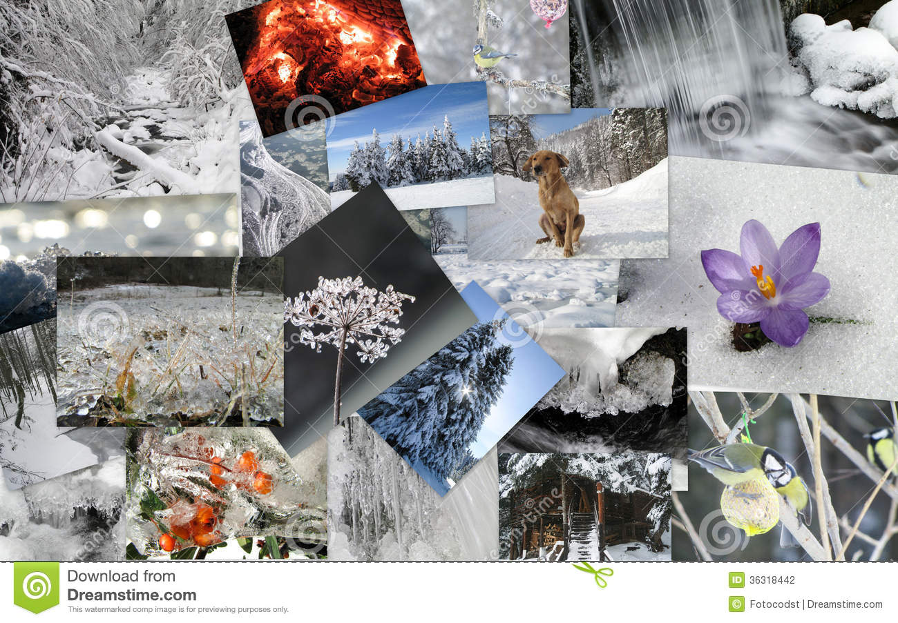 Winter Theme Collage Stock Photo Image Of Climate