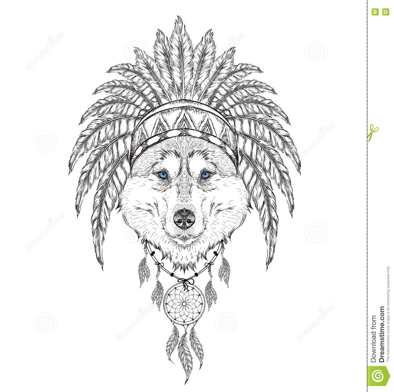 Wolf In The Indian Roach Indian Feather Headdress Of