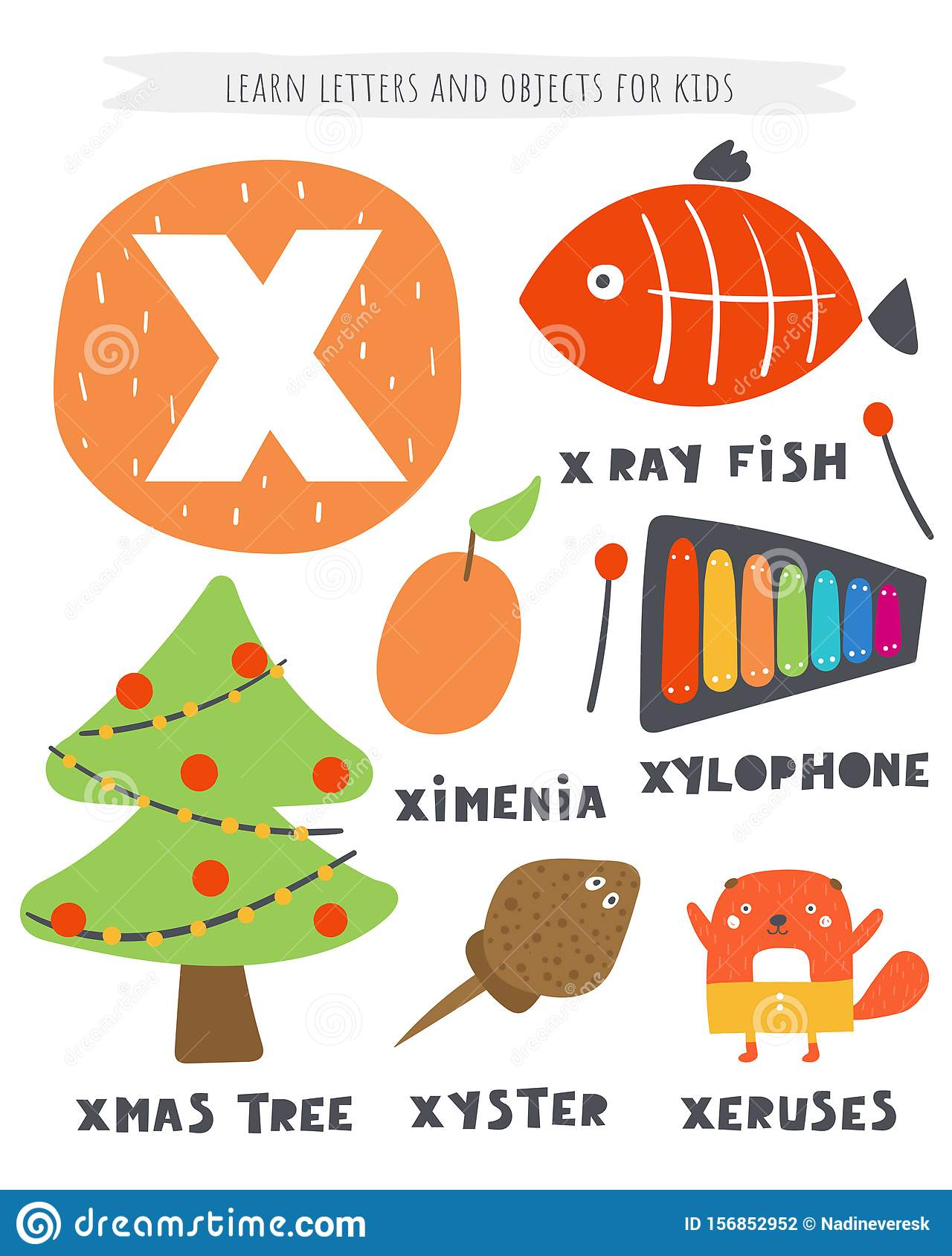 X Letter Objects And Animals Including Xmas Tree X Ray