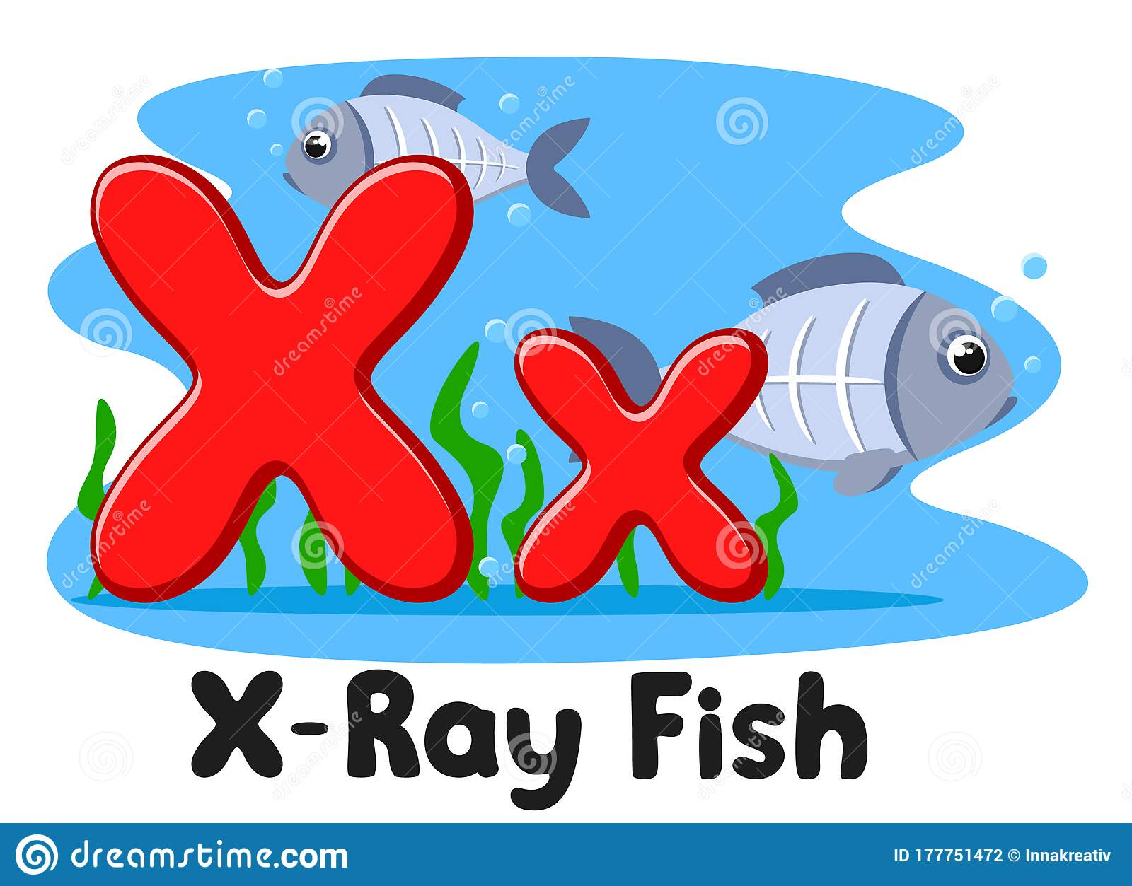 X Ray Fish Letter On A White Background Alphabet For