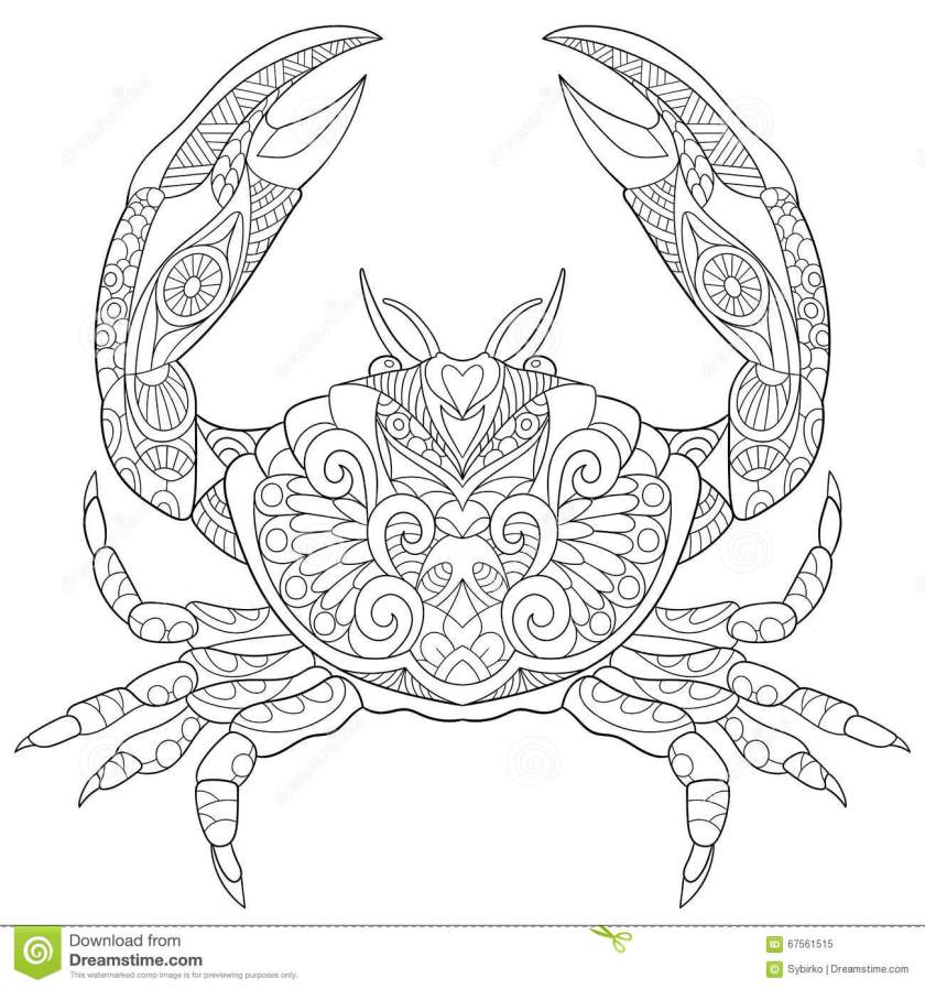 zentangle stylized crab stock vector. illustration of