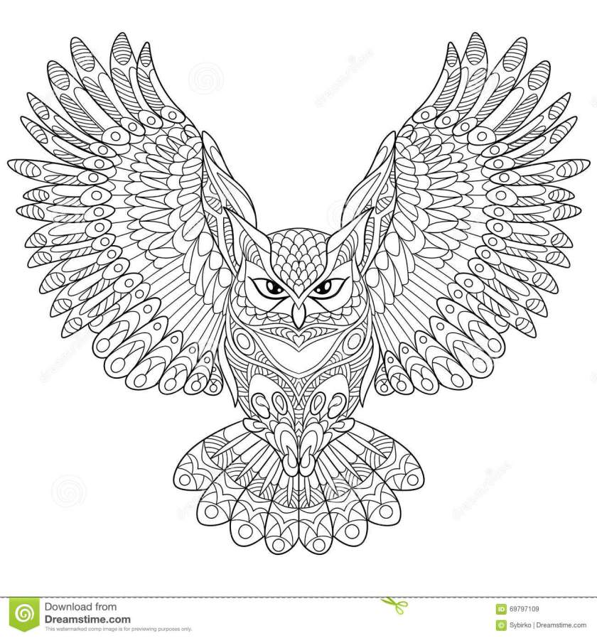 zentangle stylized eagle owl stock vector  illustration