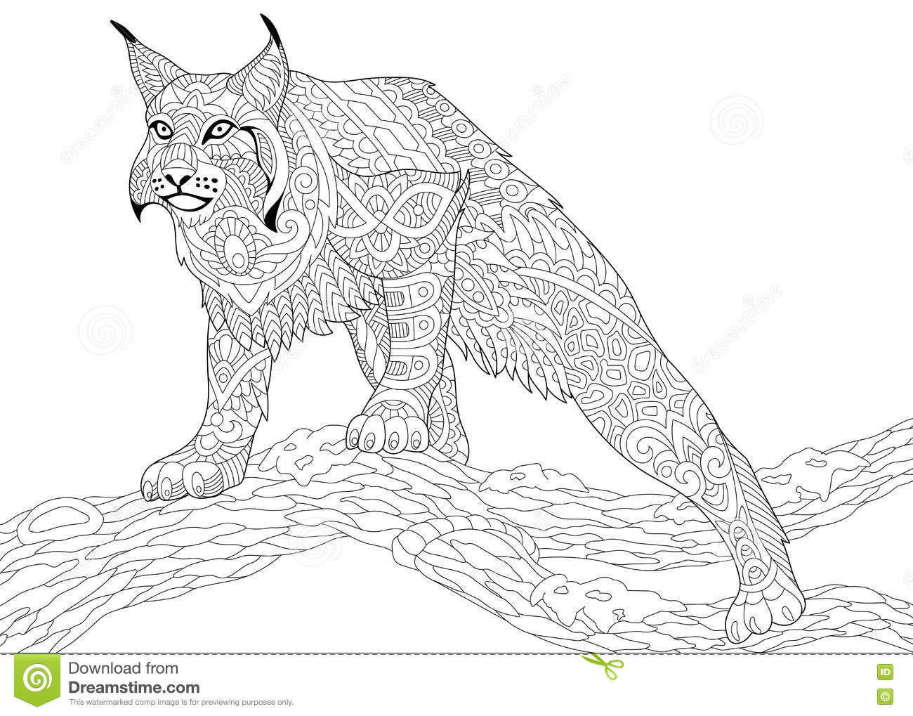 Cartoon Bobcat Cartoons Illustrations Amp Vector Stock