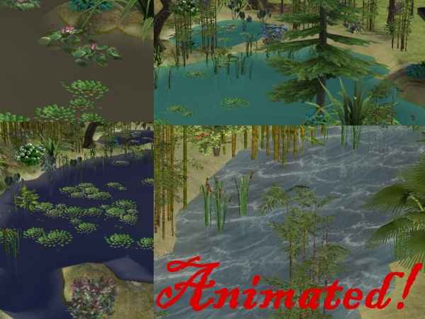 Building Pond Natural