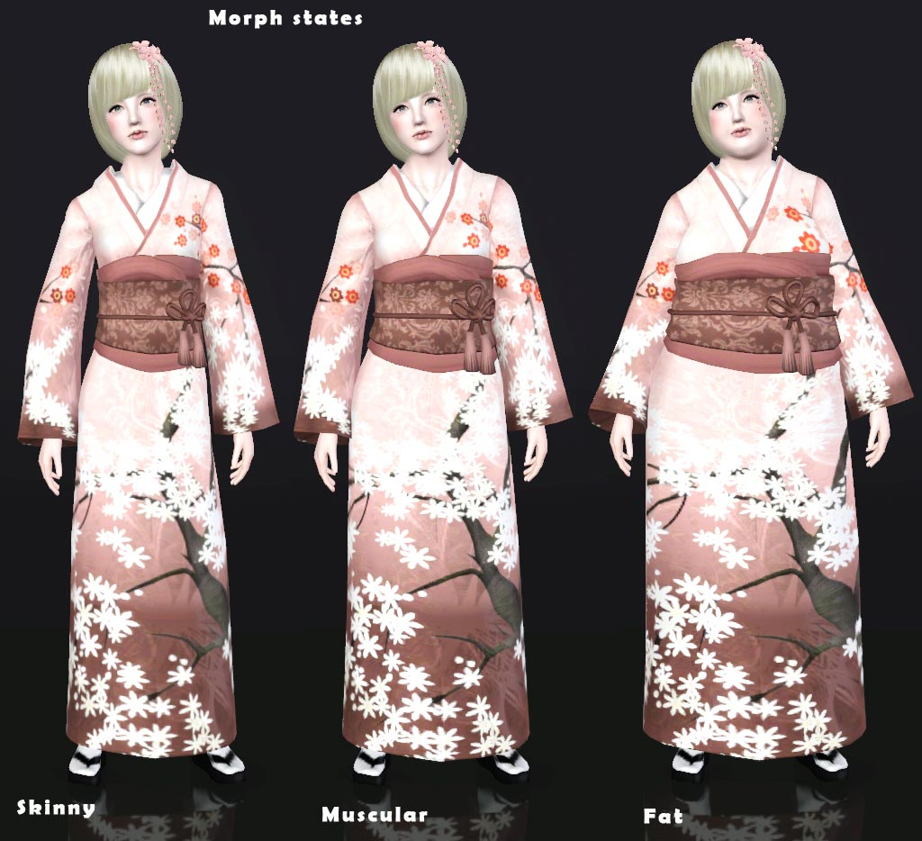 Traditional Japanese Clothing Other Dresses Dressesss