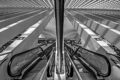 Treinstation Luik -Guillemins