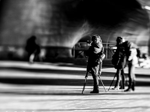 Photographers at work (B&W)