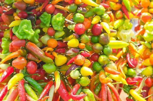 Kleurrijke pepers