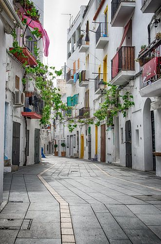 Ibiza-stad