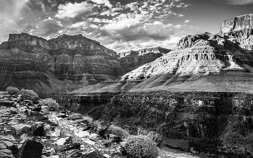 Grand Canyon Arizona Verenigde staten.