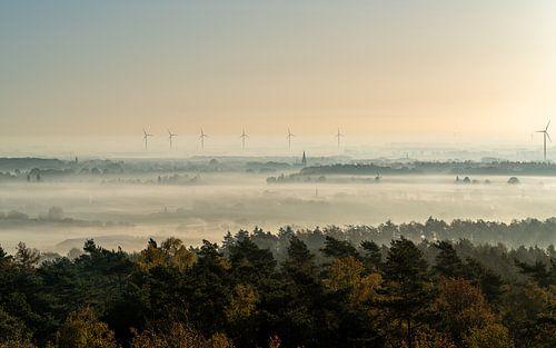 Zonsopgang zicht op een mistige ochtend in Montferland