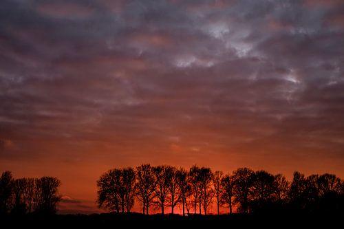 polder in rood licht