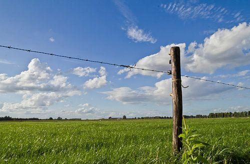 Weidepaal in een grasland met hollandse wolken