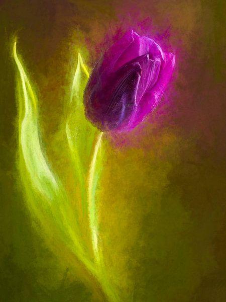 Geschilderde paarse tulp