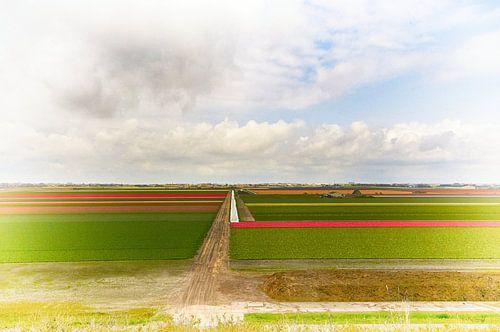 Hollands landschap