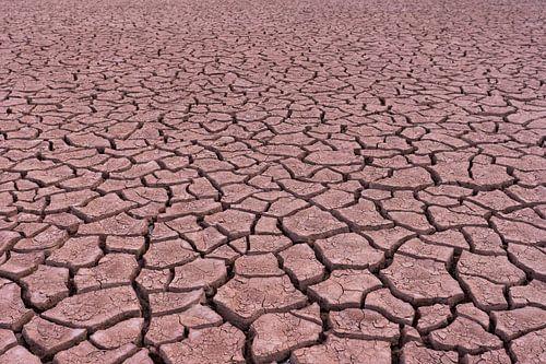 Patronen in de woestijn