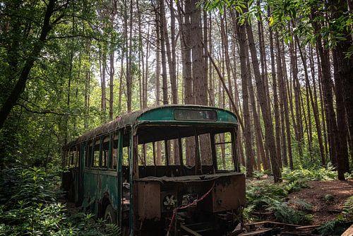 Verlaten bus in het bos
