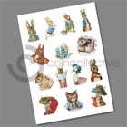 Beatrix Potter 50p Coin Decals Stickers 2016 2017  2018 Multi Listing
