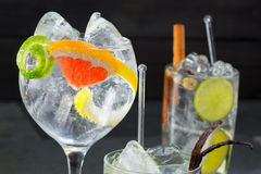 Gin tonic varied cocktails with lima lemon and grapefruit Royalty Free Stock Photography